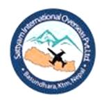 SATYAM INTERNATIONAL SERVICES PVT. LTD.